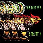 Meters_struttin